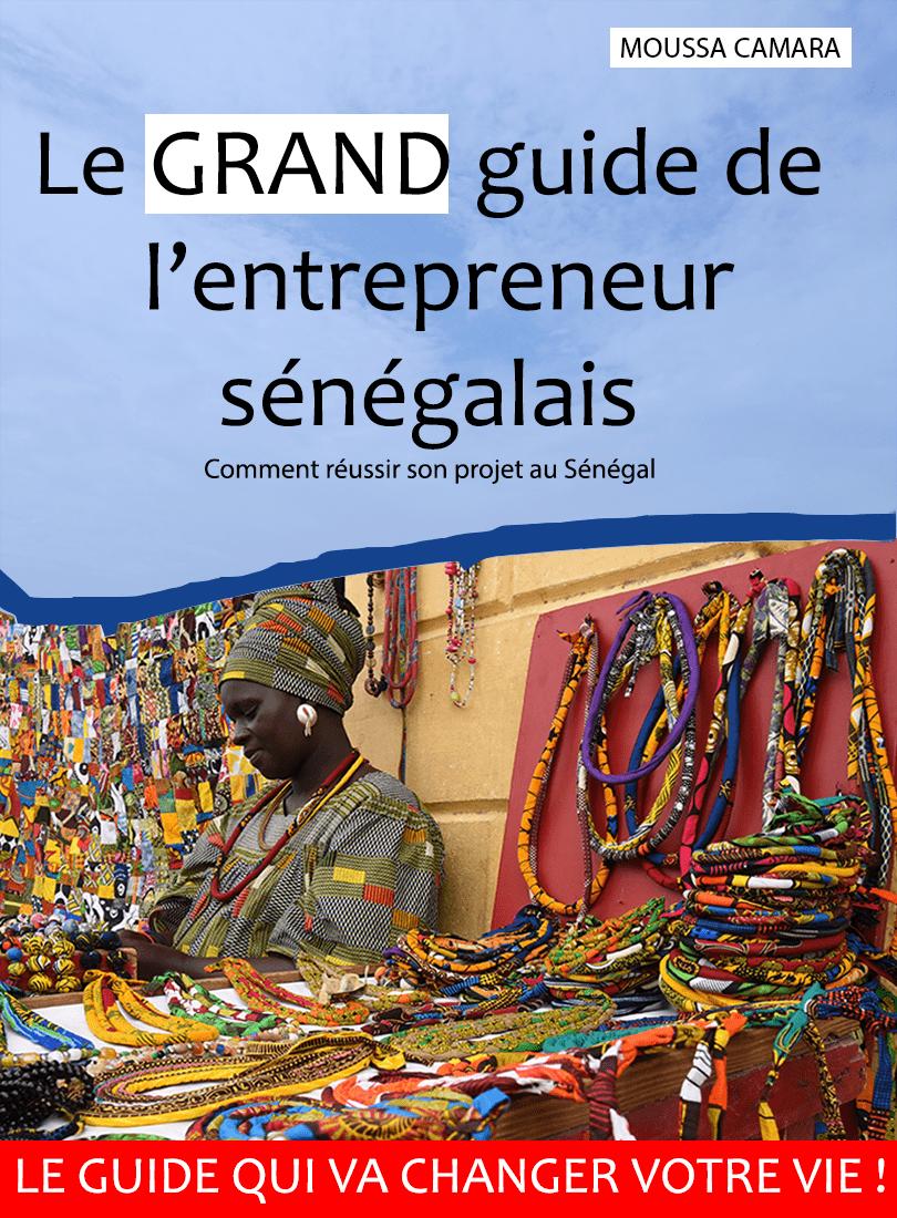 le-grand-guide-de-l'entrepreneur-sénégalais