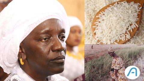 Découverte : Korka Diaw, l'entrepreneure qui a révolutionné la culture du riz au Sénégal.