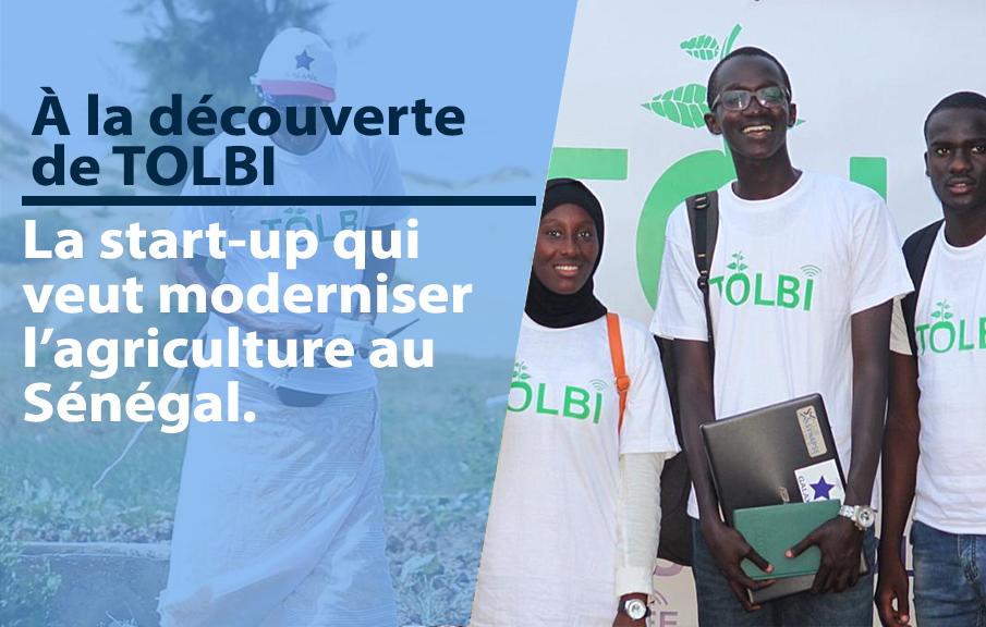 À la découverte de TOLBI, la start-up qui modernise l'agriculture au Sénégal.